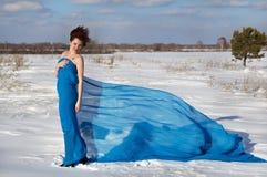 Vintern går en nätt flicka på naturen Arkivfoto