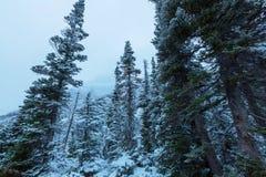Vintern i glaciär parkerar Royaltyfria Foton