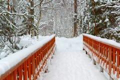 Vintern i stad parkerar snowdrifts Royaltyfri Fotografi