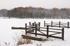 Vintern i staden parkerar Arkivfoto