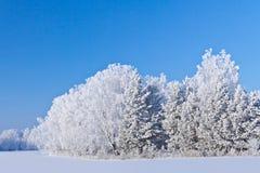 Vintern kom Arkivbilder