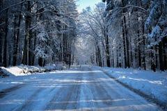 Vintern komms royaltyfri bild