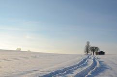 Vintern landskap Royaltyfria Bilder
