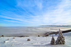 Vintern landskap Royaltyfria Foton