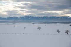 Vintern landskap Arkivbild