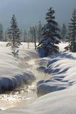 Vintern landskap i bavaria arkivbilder