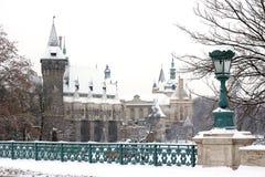 Vintern landskap i Budapest Royaltyfria Foton