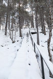 Vintern landskap i Lapland, Finland Royaltyfria Foton