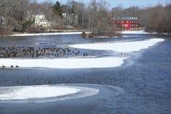 Vintern landskap   fotografering för bildbyråer