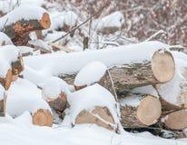 Vintern loggar in snö Arkivbilder