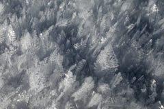 Vintern mönstrar #3 Arkivfoton