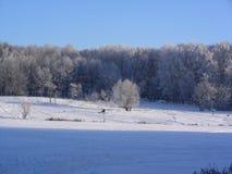 Vintern parkerar, ängen, snö, frost, solen, lutning Royaltyfri Foto