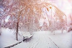 Vintern parkerar Arkivfoto