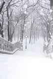 Vintern parkerar kliver Fotografering för Bildbyråer