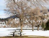 Vintern parkerar och trädlandskapet Arkivbild