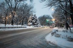 Vintern parkerar snö på snö-täckte vägen för trädjulgranar den buskar Arkivfoton