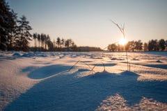 Vintern sätter in solnedgång med snö Arkivfoto