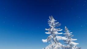 Vintern sörjer Royaltyfria Bilder
