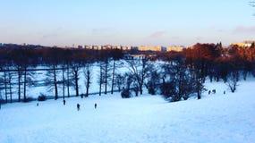 Vintern tar hållen av naturen royaltyfria bilder