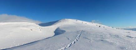 Vintern Ukraina, berget, solnedgången som är carpathian, bergskedja, landskap, turism, snöresa, utomhus, fördunklar himmel, dimma arkivfoto