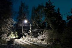 Vinternatt royaltyfri fotografi