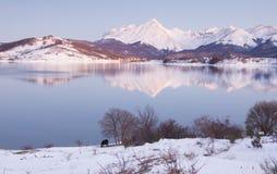 Vinternatt i Abruzzo Fotografering för Bildbyråer