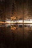 Vinternatt i en parkera Arkivbild