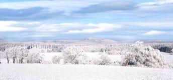 Vinterpanorama Royaltyfria Bilder