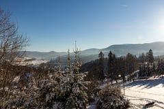 Vinterpanoramalandskapet med skogen, träd täckte snö och soluppgång winterly morgon av en ny dag Vinterlandskap med solnedgång arkivfoto