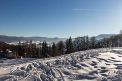 Vinterpanoramalandskapet med skogen, tr?d t?ckte sn? och soluppg?ng winterly morgon av en ny dag Vinterlandskap med solnedg?ng royaltyfria foton