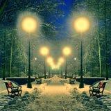 Vinterpark som räknas med snow med lampor arkivfoto