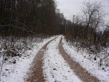 Vinterpassage till trädgårdarna Royaltyfri Fotografi