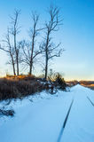 Vinterperspektiv Arkivfoton