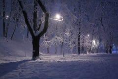 Vinterplats Royaltyfria Bilder