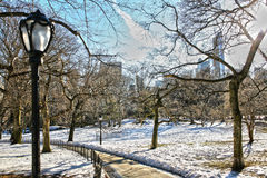 Vinterplats i Central Park, New York royaltyfri foto