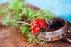 Vinterplatsen med nya gröna filialer av sörjer, järnek, en, kottar, stjärnan, röd bärbarberry i naturligt trä Royaltyfri Bild