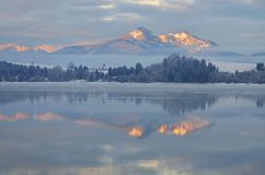 Vinterreflexion Arkivbilder
