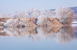 Vinterreflexion i floden Royaltyfri Foto