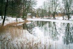 Vinterreflexion i Stameriena, Lettland Fotografering för Bildbyråer