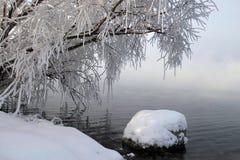 Vintersaga Royaltyfri Fotografi
