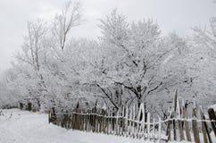 Vintersaga Royaltyfri Bild