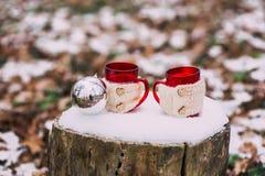 Vintersammansättning Fotografering för Bildbyråer