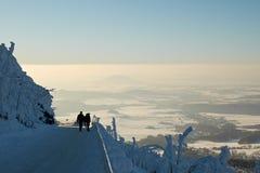 Vintersikt Royaltyfri Bild