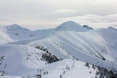 Vintersikt av bergen royaltyfri bild