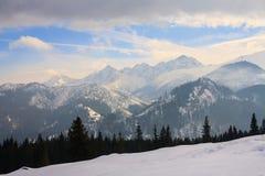 Vintersikt av djupfryst yttersida av höga Tatra royaltyfria bilder