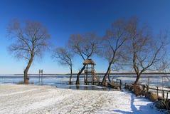 Vintersikt av floden i snö, Biebrzanski nationalpark, Polen arkivbilder