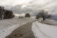 Vintersikt på den Olympiapark Munich Munchen Tyskland royaltyfria foton
