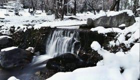 , vinterskönhet Arkivfoto