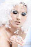 Vinterskönhet med den crystal gemen Royaltyfri Bild