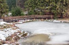 Vinterskog i Carpathians Arkivfoton